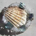 Abalone Shell & Clear Quart..